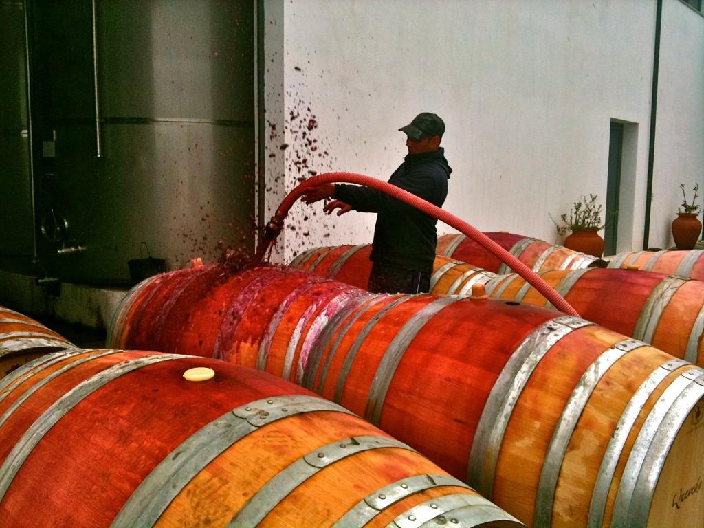 Quevedo Port Wines Douro on the making