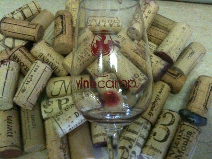 Vinocamp Languedoc Wine Diversity